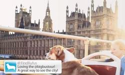 Sponsored Post: London, Erleben Sie es selbst
