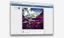 Katzenbilder nun auch am PC: Instagram führt den Web-Feed ein