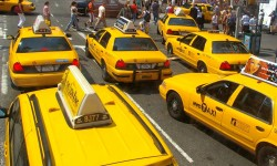 NY-Taxis (Bild: N-Lange.de [CC BY-SA 3.0], via Wikipedia)