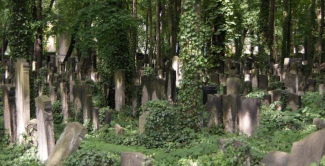 Friedhof (Bild: Martin Abegglen [CC BY-SA 2.0], via Flickr)