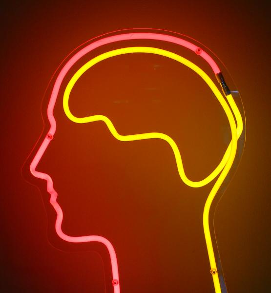 Brain (adapted) (Image by dierk schaefer [CC BY 2.0] via Flickr)
