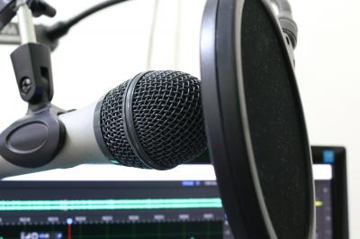 Mikrofon (adapted) (Image by florantevaldez [CC0 Public Domain] via Pixabay)