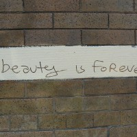 Beauty Is Forever (Image: J Dub [CC BY 2.0], via Wikimedia Commons)