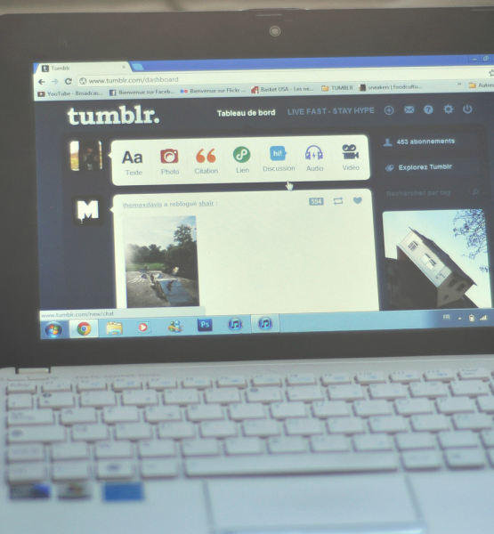 Life is Tumblr (adapted) (Image by Romain Toornier [CC BY 2.0] via flickr)