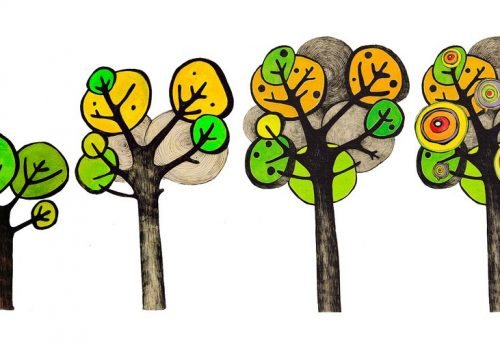 apple tree growth (adapted) (Image by foam [CC BY-SA 2.0] via Flickr)