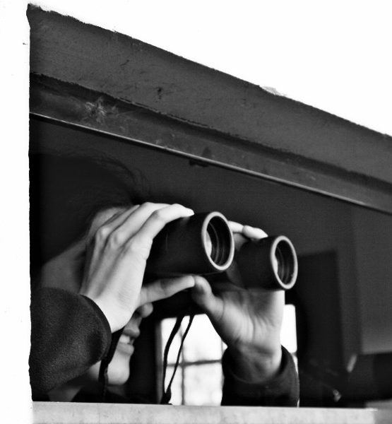 she spy (adapted) (Image by Kangrex [CC BY 2.0] via flickr)