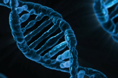 DNA (Image by PublicDomainPictures [CC0Public Domain]) via Pixarbay