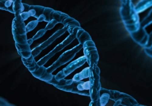 DNA (Image by PublicDomainPictures [CC0Public Domain]) via Pixarbay