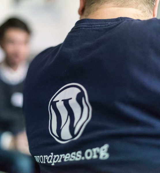 Vienna WordPress Meetup #2 (adapted) (Image by Heisenberg Media [CC BY 2.0] via Flickr)