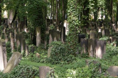 friedhof (adapted) (Image by Martin Abegglen [CC BY-SA 2.0] via Flickr)