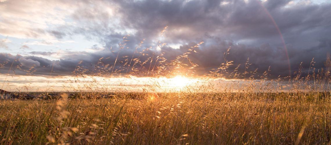 sunset(image by Unsplash[CC0 Public Domain] via Pixabay)