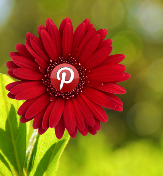 Pretty Pinterest (adapted) (Image by mkhmarketing [CC BY 2.0] via Flickr)