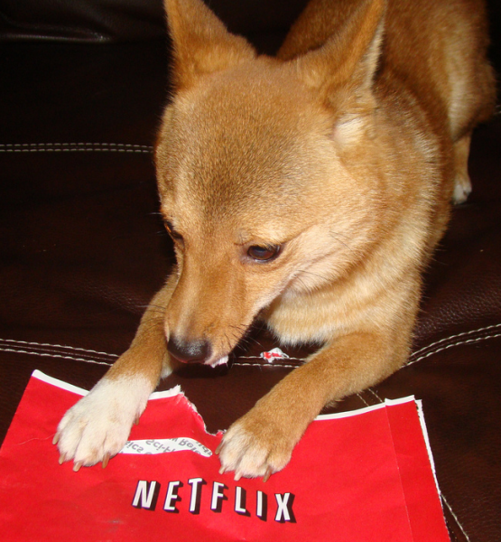 conclusion netflix envelopes_tasty (adapted)(Image by Taro the Shiba Inu [CC BY 2.0] via Flickr)