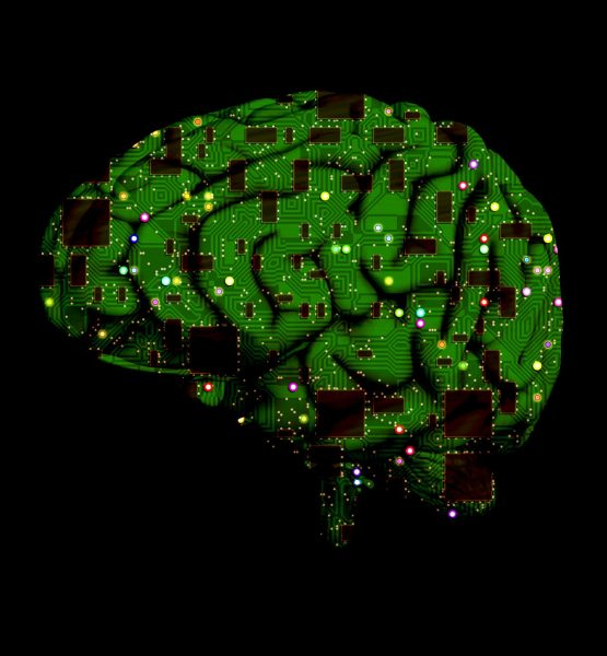 Brain (adapted) (Image by PeteLinforth [CC0 Public Domain] via pixabay)