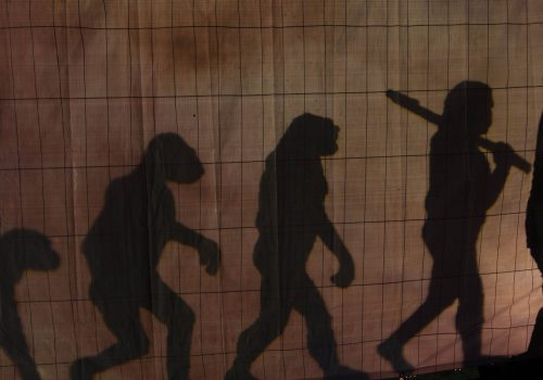 Evolution (adapted) (Image by Thomas Wensing [CC BY-SA 2.0] via flickr)