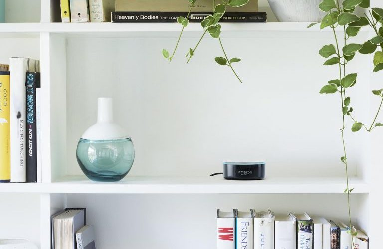 3 Amazon-Echo-Dot-Bookshelf-768x512