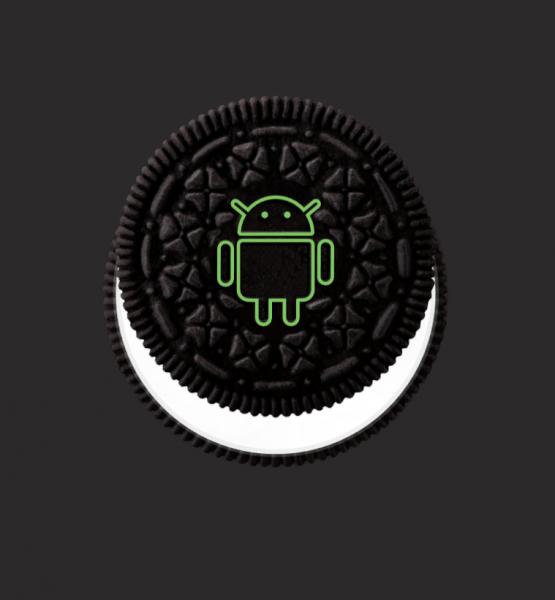 Android 8 Oreo (Screenshot by Berti Kolbow-Lehradt)