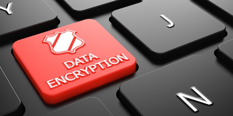 Data Encryption (adapted) (Image by tashatuvango via AdobeStock)