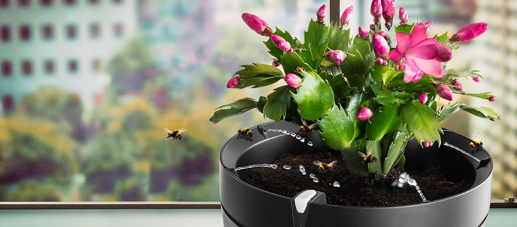gie en war gestern smarter pflanzentopf parrot pot im test. Black Bedroom Furniture Sets. Home Design Ideas