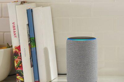 Amazon Echo Plus 2 hellgrau