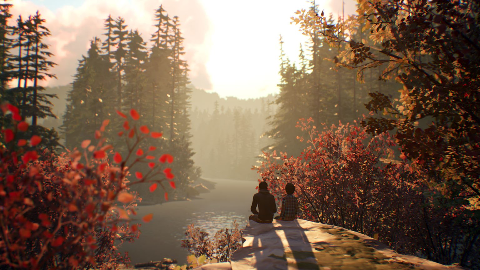 Life Is Strange 2 Test Grafik
