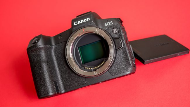 Canon EOS R Sensor und Display