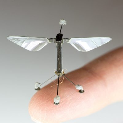 Das vorige Modell der RoboBee.