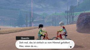 Screenshot aus Pokémon Schwert von Philipp Bader. Spiel von Nintendo