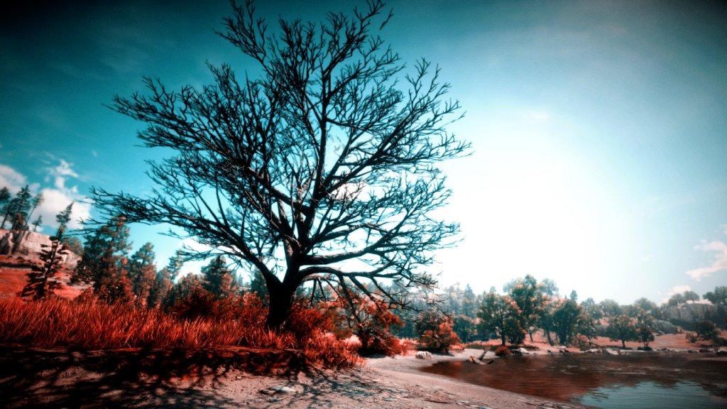 Rotfilter sorgt für Herbstlandschaft
