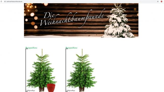 Screenshot der Weihnachtsbaumfreunde.de Website / angefertigt von Moritz Stoll