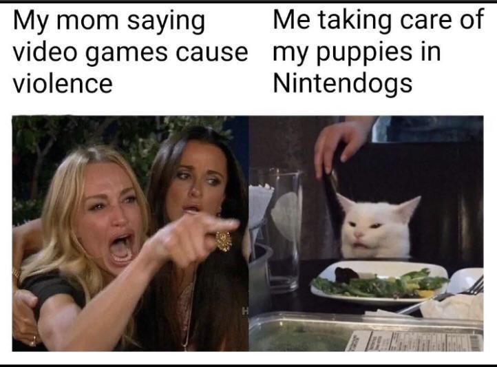 cat_meme1