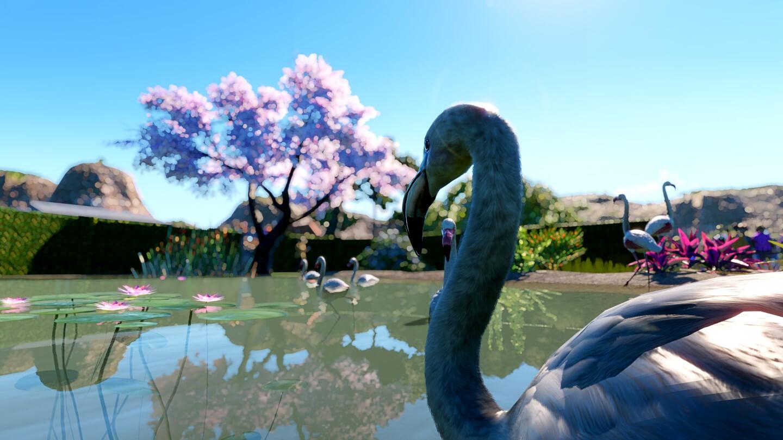 Ein Flamingo im Wasser mit Kirschbaum im Hintergrund