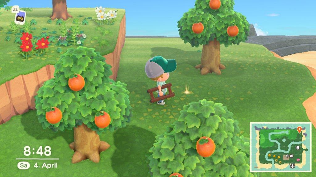 Sterni Loch in Animal Crossing: NEw Horizons / Screenshot aus Animal Crossing: New Horizons von Moritz Stoll