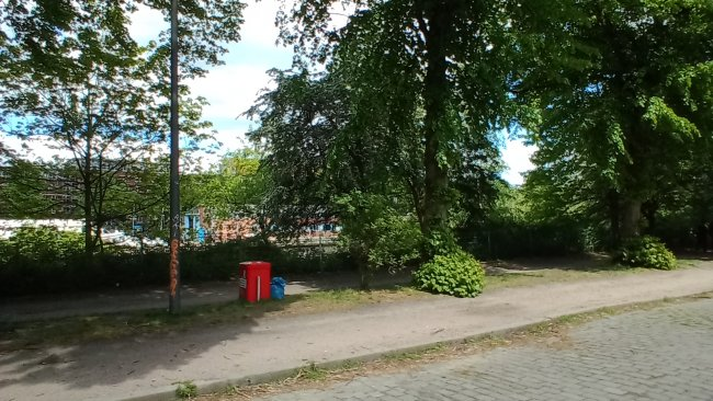 Bild im Grünen mit dem Wiko View 4 im Test
