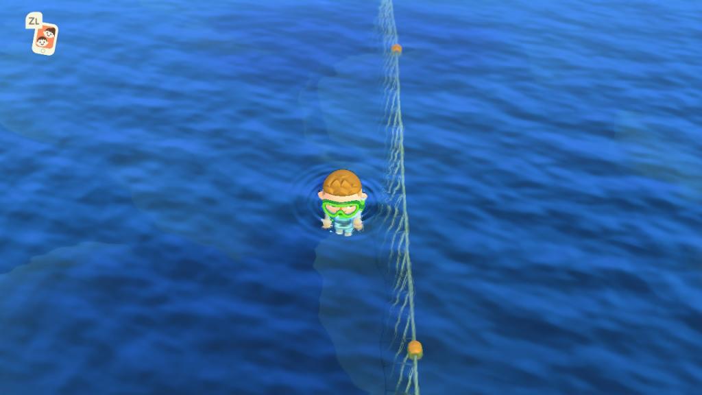 Animal Crossing Schwimmen Netz