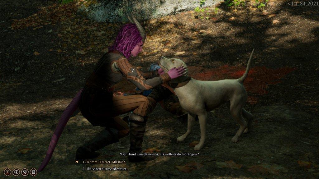 Hunde streicheln in Baldur's Gate 3.