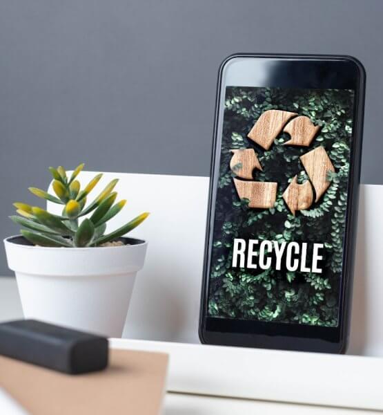 """Smartphone mit grünen Bildschirm neben Pflanze -Titelbild zu """"Die besten Apps für ein nachhaltigeres Leben"""" / Foto via AdobeStock von weedezign"""