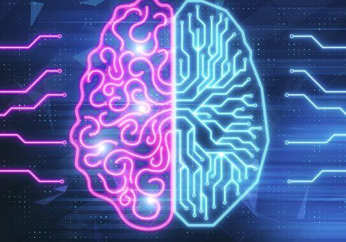 Ein schematisches Gehirn, dass zur Hälfte biologisch, zur anderen Hälfte digital ist.