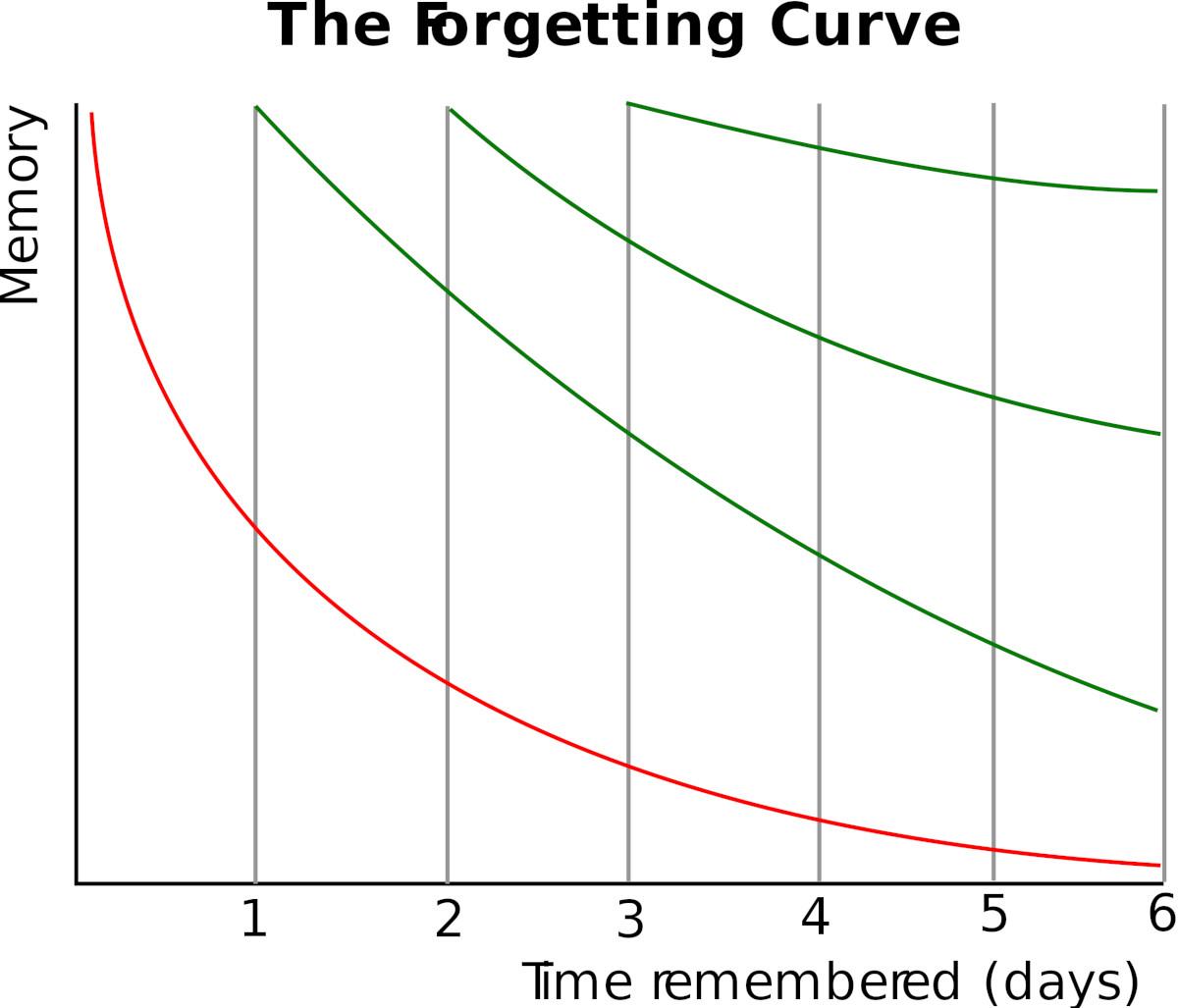 Eine Darstellung der Vergessenskurve, die verdeutlich, dass man Wissen mit jeder Wiederholung länger behält.